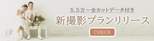 新プランリリースバナー|ウエディングフォトスタジオノーブルジャパン